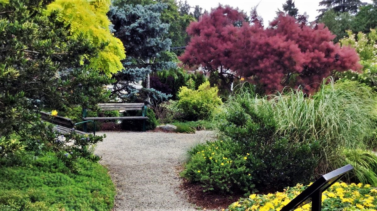Near the Provincial Courthouse and Surrey RCMP Detachment. It was built in 2001 as a Xeriscape – a landscape designed to work with nature and use less water.