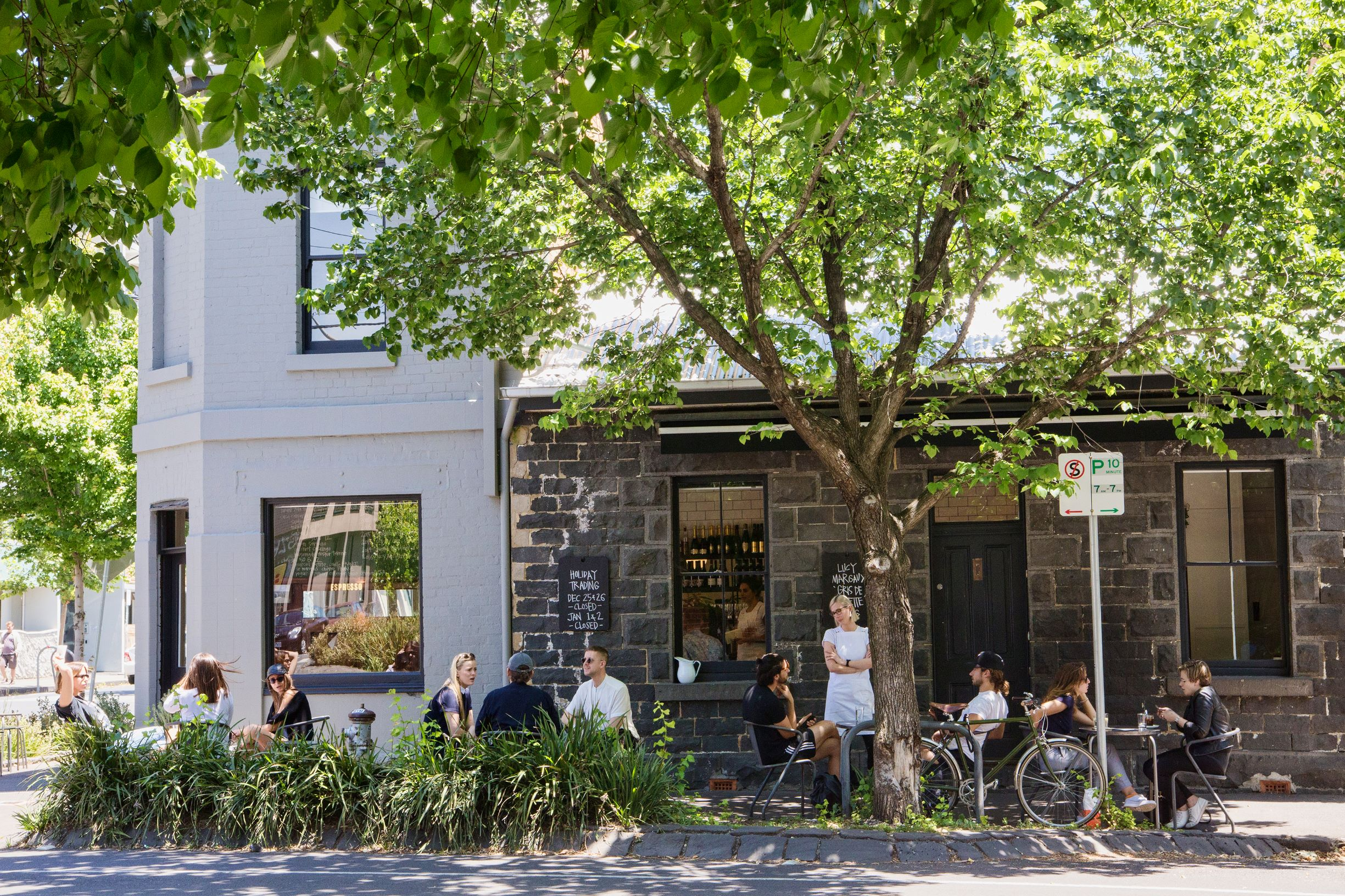 Yarra's 30,000+ street and park trees help contribute to the liveability of our city.